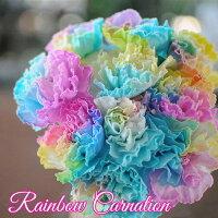 母の日レインボーカーネーション10本の花束生花カーネーション虹色カラフル花母の日ギフト母の日プレゼント