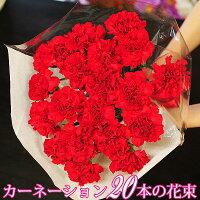【母の日カーネーションギフト】赤いカーネーション20本の花束届け日指定可能送料無料母の日2015花束カーネーション