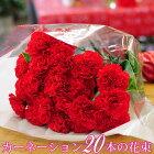 母の日 花束 ギフト 母の日 カーネーション 赤いカーネーション20本の花束 送料無料 記念日 結婚記念日 お祝い