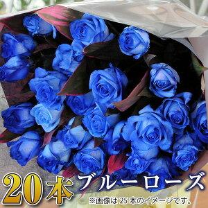誕生日 花 ギフト バラ 花束 20本 青いバラ ブルーローズ 花束 バラ 花束 誕生日 結婚記念日 プレゼント プロポーズ 花束 青いバラ ギフト20本の花束 ブルーローズ フラワーギフト バラ 送料無