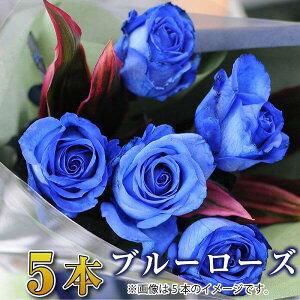 誕生日 花 ギフト バラ 花束 5本 青いバラ ブルーローズ 花束 バラ 花束 青いバラ 青いバラ花束 誕生日 結婚記念日 プロポーズ 花束 青いバラ5本の花束 ブルーローズ 薔薇 送料無料 送別会 退