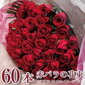 誕生日 花 ギフト バラ 花束 60本 還暦祝い 赤いバラ 花束 バラ 花束 赤いバラ 還暦 赤いバラの花束 60本 赤いバラの花束プレゼント 誕生日花束 赤いバラ プロポーズ花束 バースデー花束 赤い