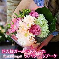 母の日ガーベラソープあじさいカーネーション花束フラワーギフト花ギフトミニブーケ送料無料