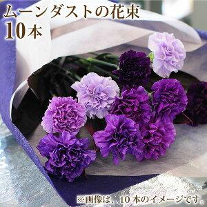 誕生日 記念日 花 ギフト 花束 プレゼント を 贈る ムーンダストの花束 10本 青いカーネーション バースディ 結婚祝 ギフト 年の数 フラワー 花束 カーネーション 誕生日 花束 記念日 ムーン