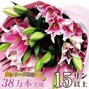母の日 遅れてごめんね 花束 誕生日 ユリ 花束 ギフト 生花 ピンクユリの花束 大輪系 15輪以上 百合 ゆり 誕生日 プレ…
