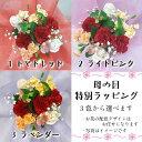 花ことば レインボー アレンジメント プレゼント フラワー