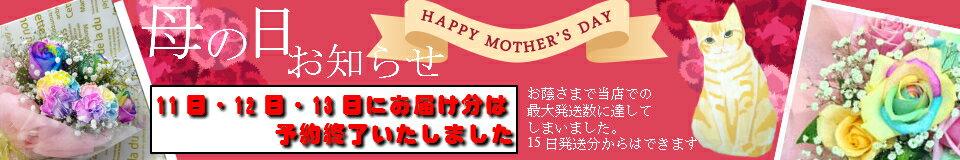 花ことばの⇒ひよこのアレンジメント【お勧めは】誕生日・記念日・贈り物・バースデー 七夕 敬老