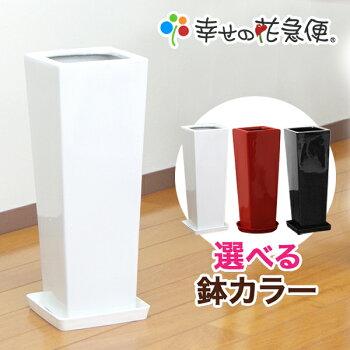 7号角陶器鉢L
