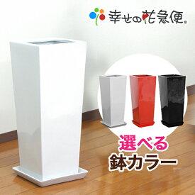 8号高陶器鉢(角)(白赤黒) A-024|【送料無料/観葉植物/おしゃれな植木鉢/植え替え/インテリア/スクエア/大型】【smtb-ms】