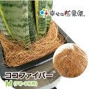 ココファイバーM(7号・8号用)|【送料無料/観葉植物/マルチング材/飾り石/ココヤシ】