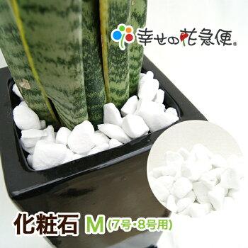 化粧石-M(7号・8号用)【送料無料/観葉植物/マルチング材/飾り石/インテリアストーン】