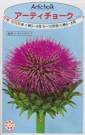 【種子】アーティチョーク(朝鮮あざみ) 福花園種苗