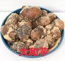 大和芋 1kg(充填時)種イモ用