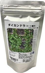 【お徳用】ダイカンドラ100ml景観用種子