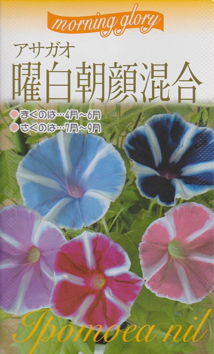 アサガオ曜白朝顔混合【種子】福花園種苗