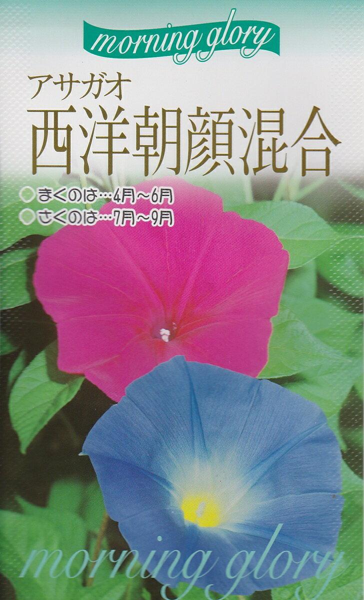 アサガオ西洋朝顔 混合【種子】福花園種苗
