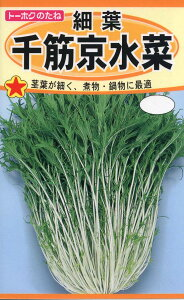 【種子】細葉 千筋京水菜トーホクのたね
