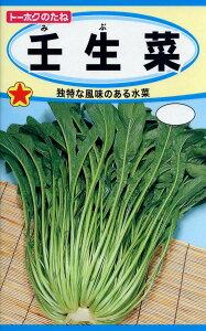 【種子】壬生菜トーホクのたね