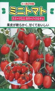 【種子】ミニトマトスイーツミニ カリーノ・ドルチェトーホクのたね