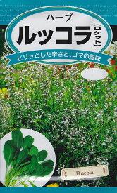 【種子】ハーブルッコラ(ロケット)日本農産種苗