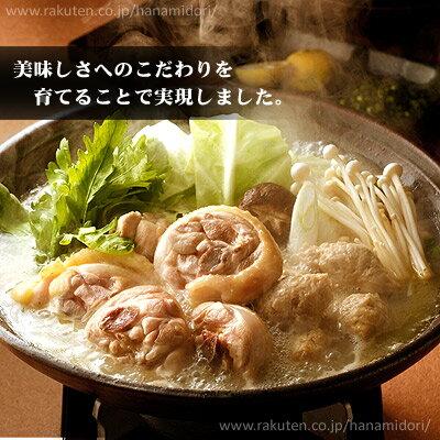 博多華味鳥の水炊きセット(7〜8人前)お取り寄せグルメ