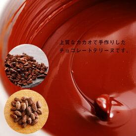 《早割20%OFF》博多華味鳥のチョコレートテリーヌ(ミニサイズ)70g 【公式】