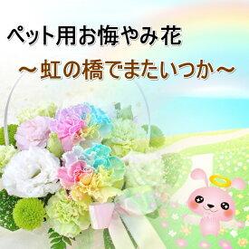送料無料!ペット用 お悔やみ花 レインボーカーネーション入り お供えアレンジメント 生花アレンジメント