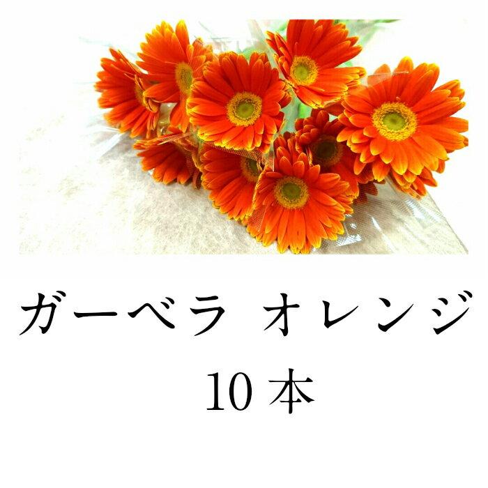 切花 ガーベラ オレンジ 10本 生花