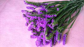 切花 スターチス 紫 1本 生花 同梱可能