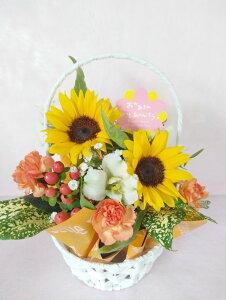 ラッピングつき 生花 アレンジ ひまわり 向日葵 バスケット 送料込み  可愛い フラワーアレンジメント お祝い お見舞い