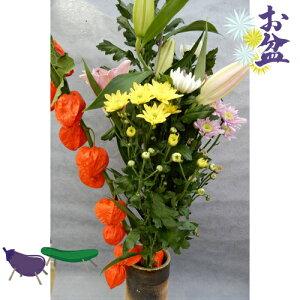 お盆 8月盆 新盆 旧盆  仏花とホオズキの切花お盆セット