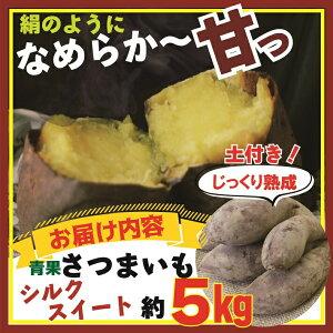 予約販売 送料無料 青果 サツマイモ シルクスイート 充填時約5kg クリーミーな触感 じっくり熟成 1本当たり平均200〜350グラム 焼き芋 予約注文でポイント3倍 12月上中旬より順次発送
