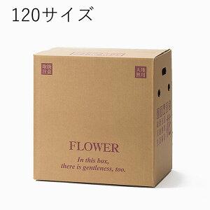 花資材【宅配BOX 120サイズ 30枚セット】PS106-120 段ボール箱 宅配ボックス 上開き 大型アレンジ用 鉢物用4〜5号 ダンボール 配送ボックス