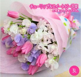 【送料無料】チューリップ 花束 スイートピー 3Lサイズ 花 フラワー ギフト 誕生日 プレゼント ありがとう 入学式 入園式 退職祝い 春の花 ホワイトデー