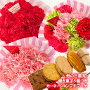 送料無料 母の日限定 ルブラン 焼き菓子5個 3色から選べる カーネーション10本のミニブーケ プレゼント 花 ギフト フラワーギフト 生花…