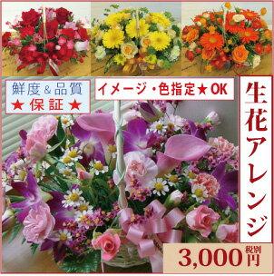 生花アレンジメント【品質保証★花】