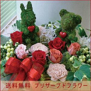 【送料無料】モスアニマル【クマさんウサギさん】【ヒルズ】