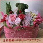 【送料無料】モスアニマル【クマさんウサギさん】【ガーデン】