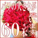 還暦祝い バラ 60本 花束 女性 母 プレゼント 還暦 バラの花束 送料無料