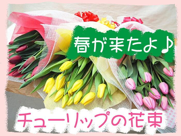 チューリップの花束 チューリップの花 10本 約30cm