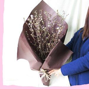 花束春の花桜花さくら花束サクラ本州は送料無料約10本くらい桜の花束