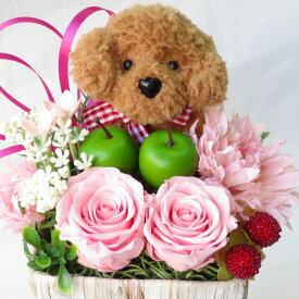 フラワーアレンジメント プリザーブドフラワー バラ あす楽 誕生日プレゼント 花 フラワーアレンジメント 犬 トイプードル