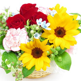 フラワーアレンジメント あす楽 誕生日プレゼント 花 母 フラワー 本州は 送料無料 アレンジ