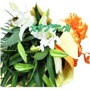 花束 花束誕生日 カサブランカ 花束 誕生日プレゼント お祝い 花 フラワー