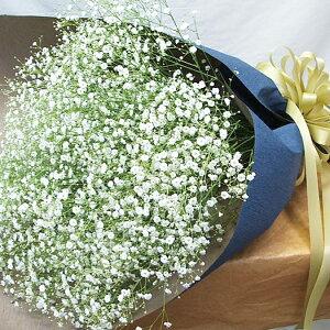 花束 かすみ草 誕生日プレゼント 花 カスミ草 妻誕生日 結婚記念日 花束 誕生日 花 花束