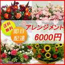 【花】フラワーコンシェルジュが厳選した花屋のお祝いアレンジメント花 6000円 【あす楽対応】【楽ギフ_包装】【楽ギフ_メッセ入力】…