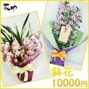 【鉢花】フラワーコンシェルジュが厳選した花屋の季節の花鉢 送料無料 10000円 【あす楽】【楽ギフ_メッセ入力】【…