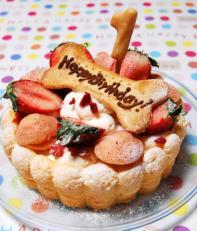 愛犬の腸内環境を整える乳酸菌◎生乳100%ヨーグルト使用♪無添加お誕生日・お祝いケーキ『ハッピーシャルロット』