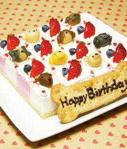 ピュアなレアチーズケーキ☆ハッピーキャレ(大きいサイズ)
