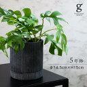 カレント 植木鉢 鉢 ポット セメント 4号 4寸 直径 14.5cm 高さ 15cm 穴あり 受け皿付き ブラック ホワイト 黒 白 グレー